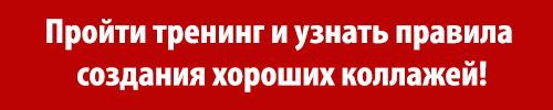knopka_01